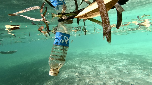 1.我们的海洋-漂流瓶.jpg